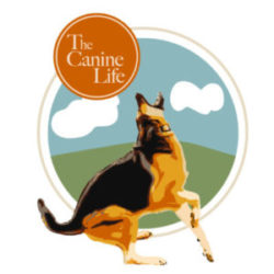 The Canine Life